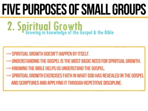 smallgroup-growth