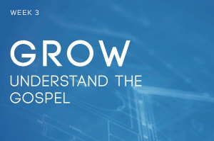 In_Understanding_The_Gospel